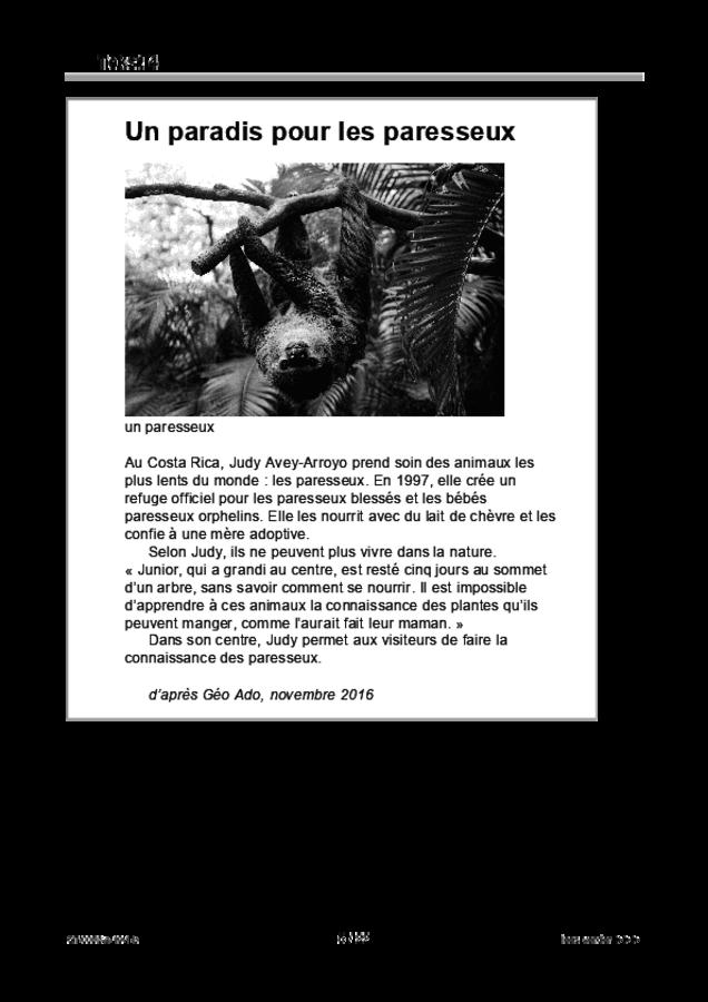 Bijlage examen VMBO GLTL Frans 2019, tijdvak 1. Pagina 5